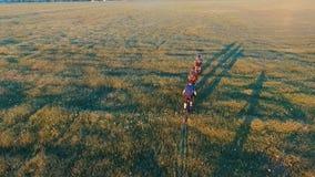 Ciclisti che guidano le loro biciclette al tramonto stock footage