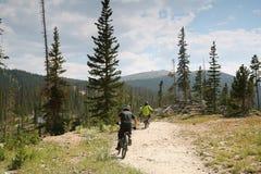 Ciclisti in mountain-bike immagine stock