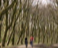 Ciclisti nella foresta Fotografia Stock Libera da Diritti