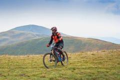 Ciclisti professionisti che guidano il mountain bike in discesa sulla traccia di montagna immagini stock libere da diritti