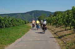 Ciclo Imagen de archivo