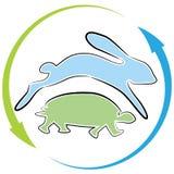 Ciclo de la raza de las liebres de la tortuga Foto de archivo