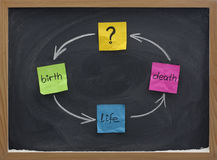 Ciclo de vida ou conceito do reincarnation no quadro-negro Fotografia de Stock