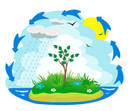 ciclo del agua Fotografía de archivo libre de regalías