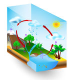 Ciclo del agua. naturaleza. Diagrama del vector