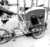 Ciclo del helado fotos de archivo