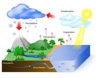 Ciclo dell'acqua illustrazione vettoriale