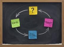Ciclo di vita o concetto di reincarnazione sulla lavagna Fotografia Stock