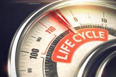 Ciclo di vita - testo sul calibro concettuale con l'ago rosso 3d Fotografia Stock Libera da Diritti