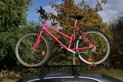 Ciclo em um carro Fotos de Stock Royalty Free