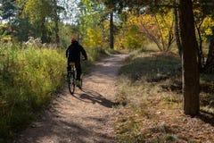 Ciclo en el rastro del bosque Fotografía de archivo libre de regalías