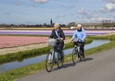Ciclo en los campos de flor Imagen de archivo