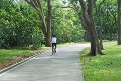 Ciclo en parque de naturaleza Fotografía de archivo