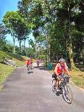 Ciclo en parque de naturaleza de Bukit Batok Foto de archivo libre de regalías