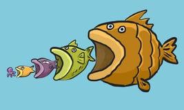 Ciclo grande de los pescados Imagen de archivo libre de regalías