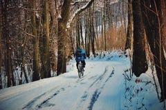 Ciclo loco Fotos de archivo