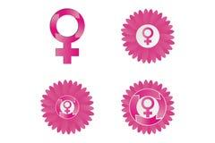 Ciclo menstrual Foto de Stock Royalty Free