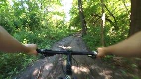 Ciclo rápido a través del bosque por la tarde del verano almacen de metraje de vídeo