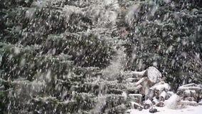 Ciclo realmente realmente di nevicata stock footage