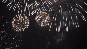 Ciclo senza cuciture del video dei fuochi d'artificio HD stock footage