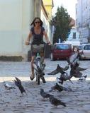 Ciclo urbano Imagen de archivo libre de regalías