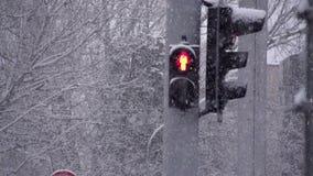 Ciclone da neve nas ruas vídeos de arquivo