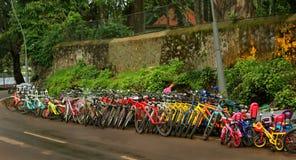 Ciclos alugado coloridos que esperam cavaleiros da excursão no kodaikanal do monte fotos de stock