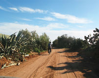 Ciclying marocchino Fotografia Stock