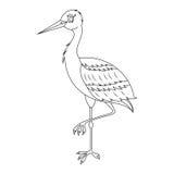 Cicogna bianca Immagine Stock
