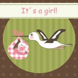 Cicogna che porta neonata Fotografia Stock