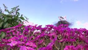 Cicogna decorativa in un giardino stock footage