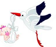 Cicogna e bambino Immagine Stock
