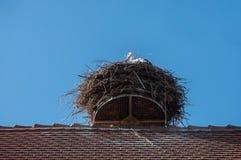 cicogna in un nido su un tetto alsaziano Immagine Stock Libera da Diritti