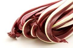 Cicoria rossa (intybus del Cichorium) Fotografia Stock Libera da Diritti