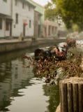 A cidade antiga Shaoxing Fotografia de Stock Royalty Free