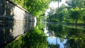 Cidade após a chuva Fotografia de Stock