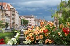 Cidade bonita Strasbourg em Alsácia em França Foto de Stock