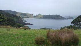 Cidade cênico de Nova Zelândia Fotografia de Stock
