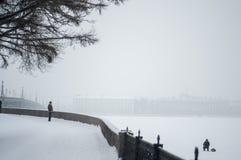 Cidade coberta com a neve Curso do inverno em Rússia St Petersburg foto de stock