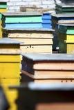 Cidade da abelha Imagens de Stock