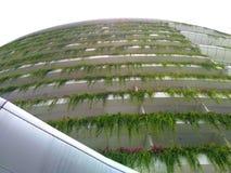 Cidade da floresta, johor Imagem de Stock