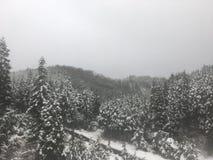 Cidade da neve Imagem de Stock Royalty Free