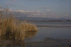 Cidadede de Quartu S e , - vista geral da lagoa Molentargius Fotografia de Stock Royalty Free
