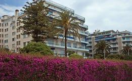 Cidade de agradável - arquitetura ao longo de Promenade des Anglais Imagens de Stock