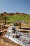 Cidade de Al Ain Fotos de Stock
