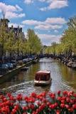 Cidade de Amsterdão com os barcos no canal contra tulipas vermelhas na Holanda Fotografia de Stock Royalty Free