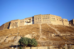 Cidade de Arbil Fotos de Stock Royalty Free