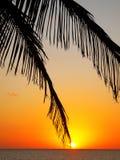 Cidade de Avana Imagem de Stock Royalty Free