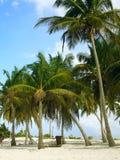 Cidade de Avana Foto de Stock Royalty Free