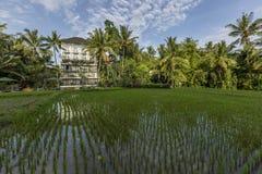 Cidade de Bali dos deuses Fotos de Stock